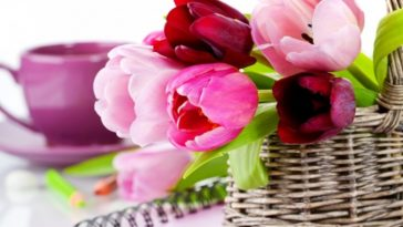 Tulips Basket Wallpaper
