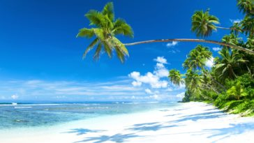 Tropical Coast White Sand Beach HD Background for Desktop