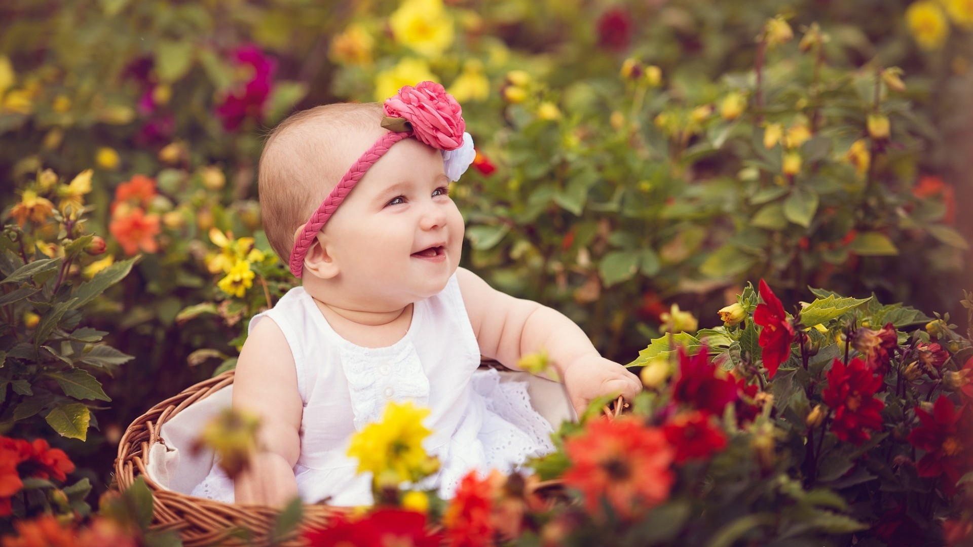 Cute Baby in Garden Photo