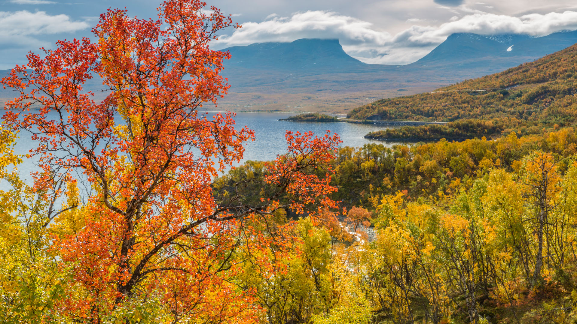 Autumn Lake in Sweden Photography Wallpapers