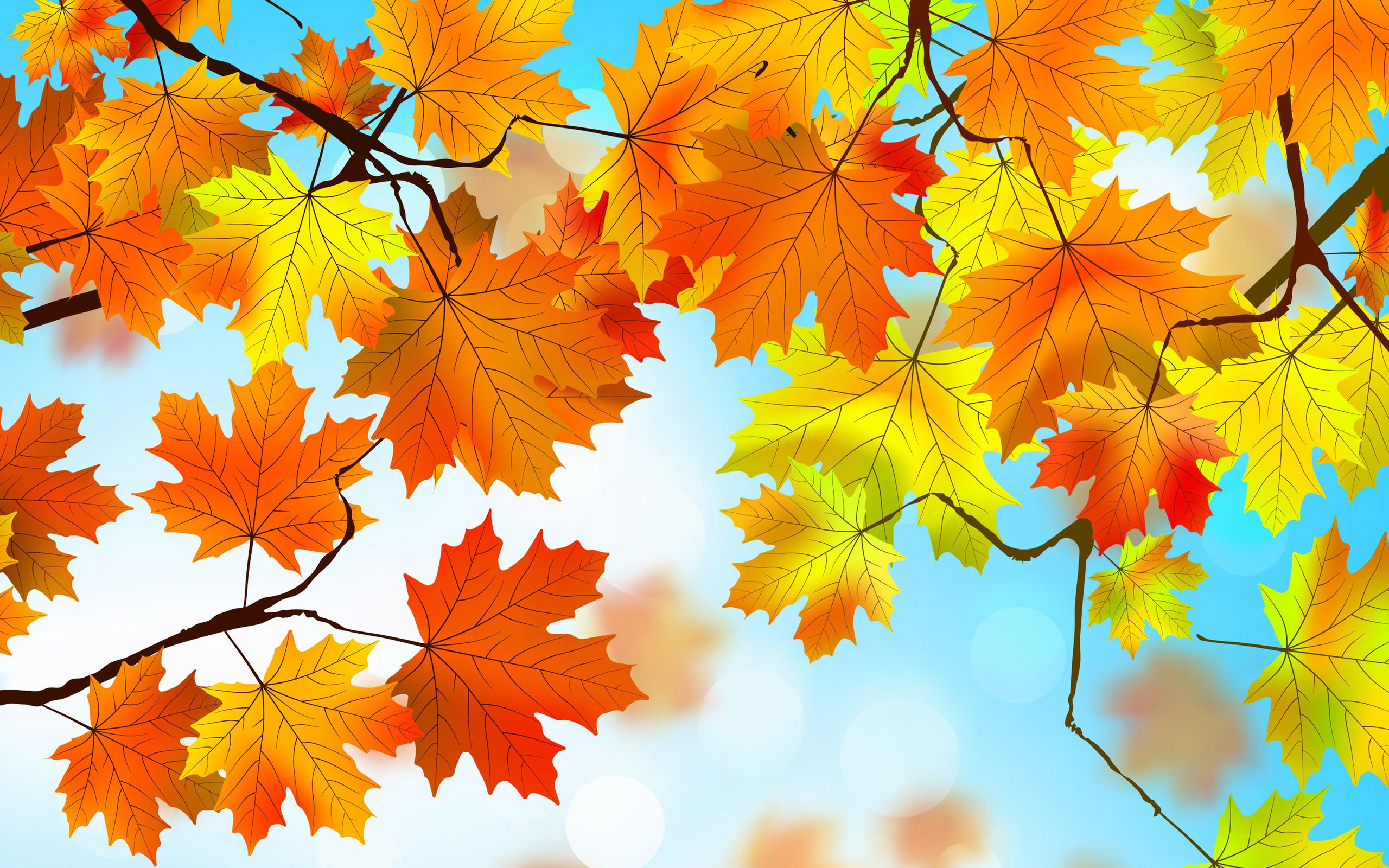 35 Beautiful Autumn Leaves HD Wallpapers