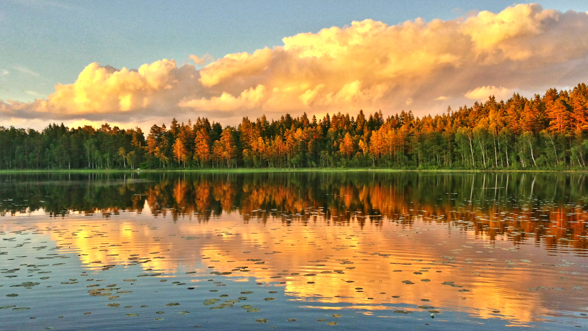 Beautiful Autumn Scene Photography In Sweden Wallpapers