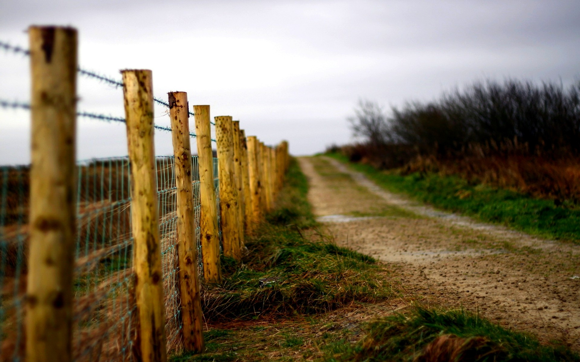 Wire fence Countryside Road Wallpapers