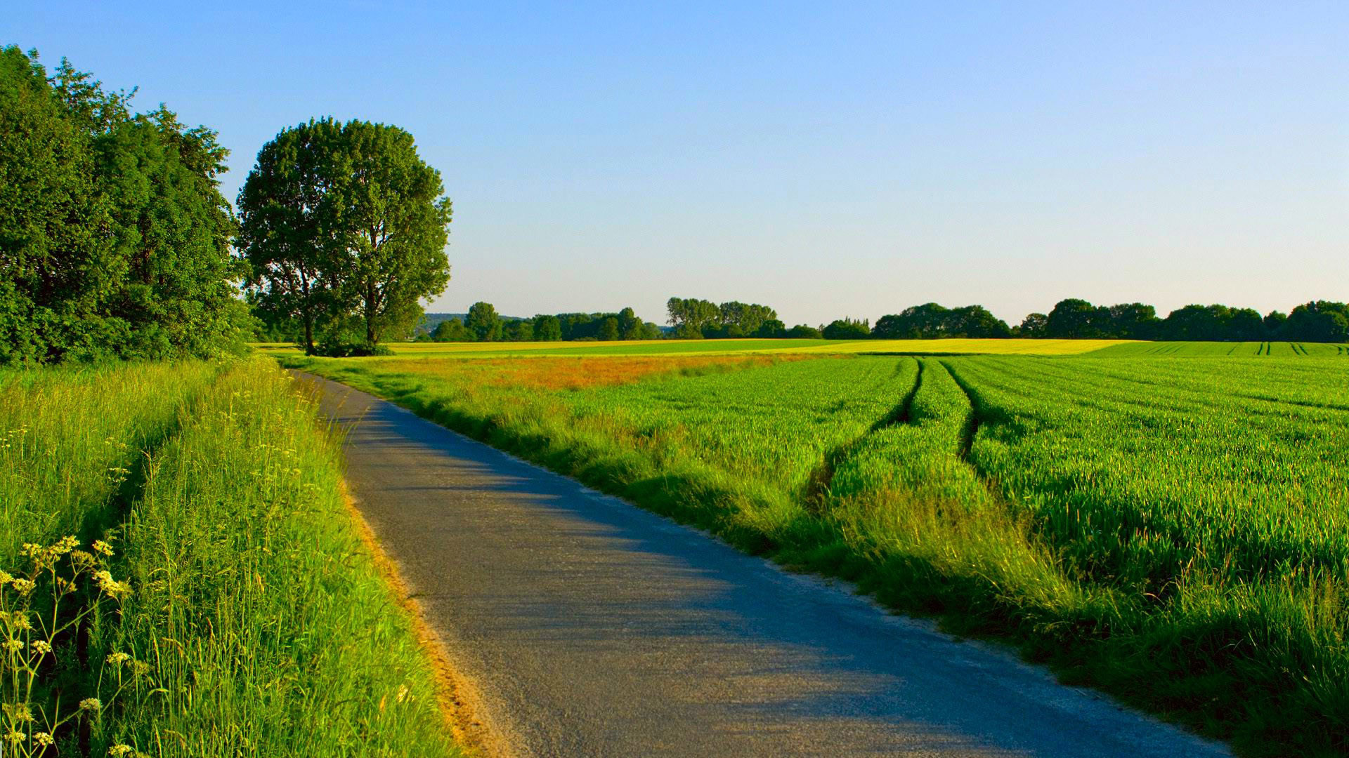 Peaceful Countryside Road Wallpapers