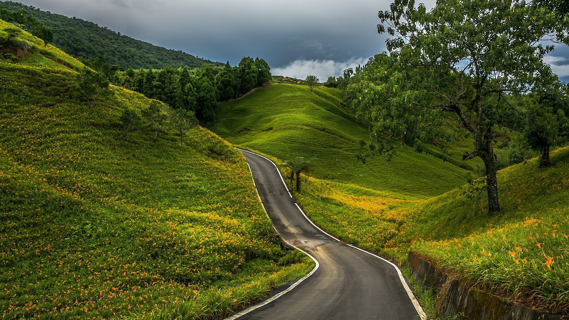 Mountain Hills Countryside Roads Wallpapers