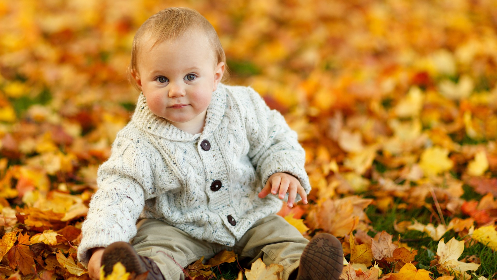 Cute Baby Boy Autumn Leaves Photo Wallpapers 1920x1080