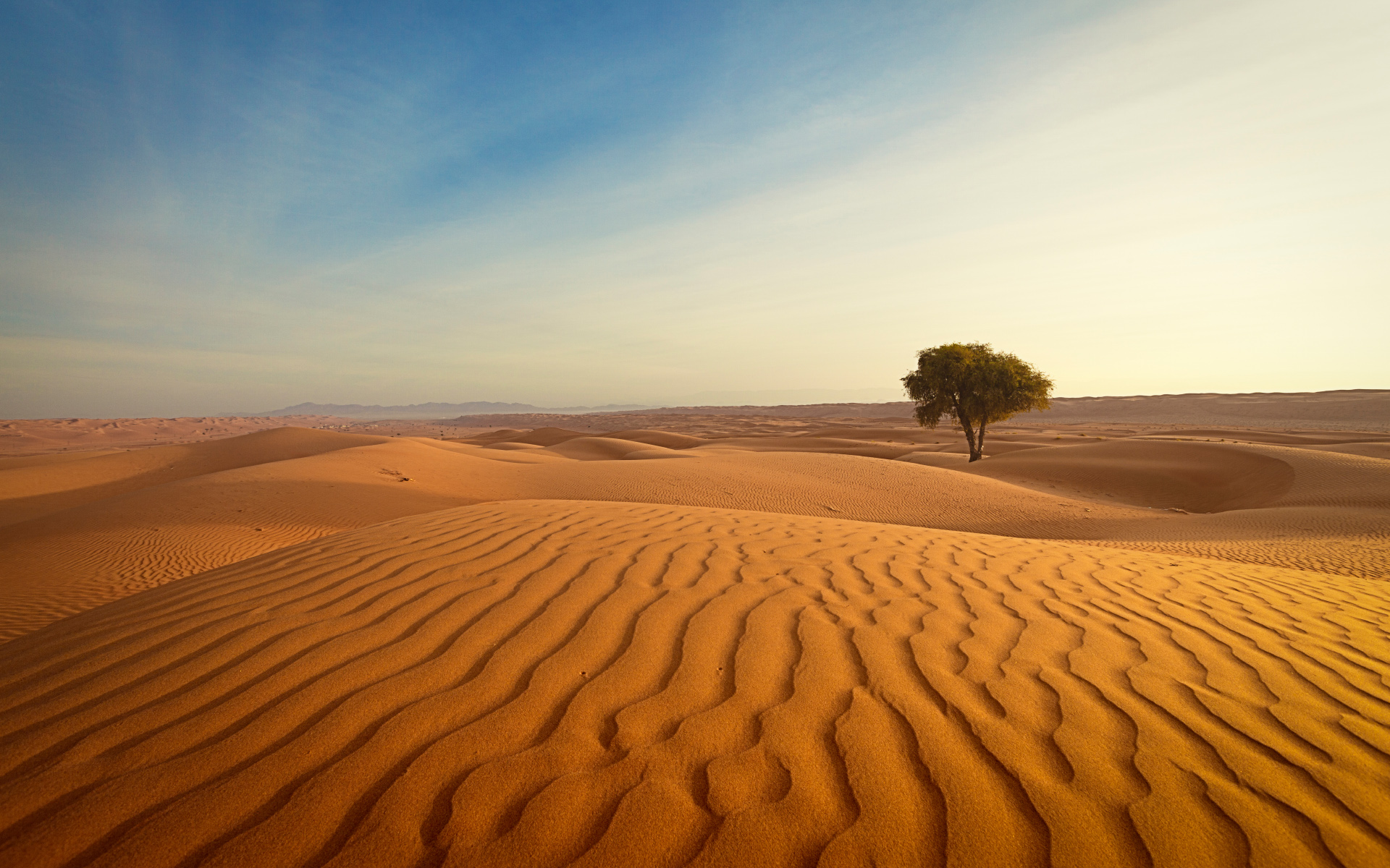 33 Amazing Desert Landscapes High Quality Wallpapers