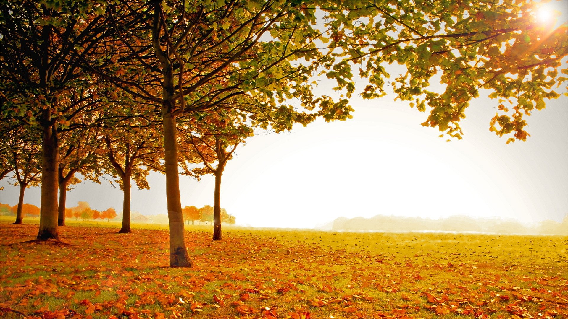 Lovely fall scenery backgrounds free download - Hd photos of scenery ...