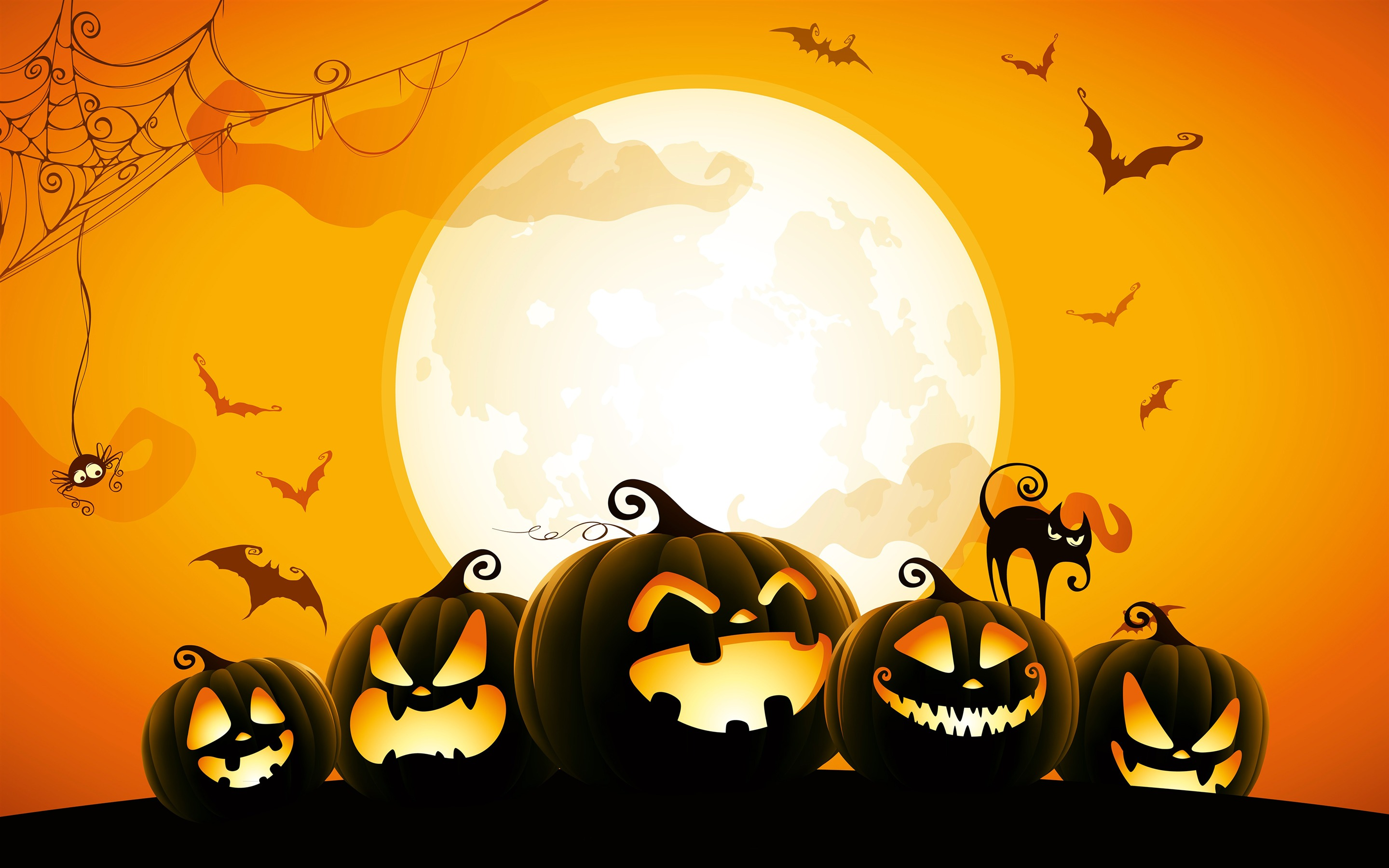 Halloween Pumpkin Spider Cat Bat Wallpaper 2880x1800