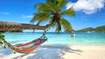 Paradise Beach Palm Desktop Wallpaper Retina ready High Resolution